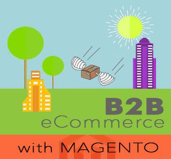 B2B eCommerce - Mageont