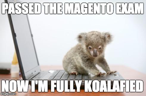 Magento Exam Meme