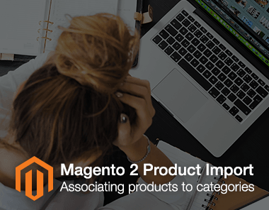 associate products to category in magento 2