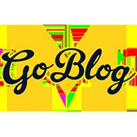 MGoBlog Sponsor