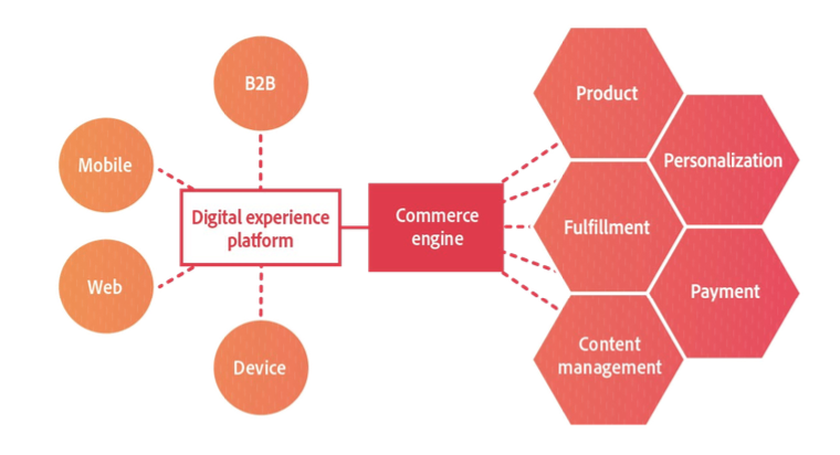 Experience-led content management graphic